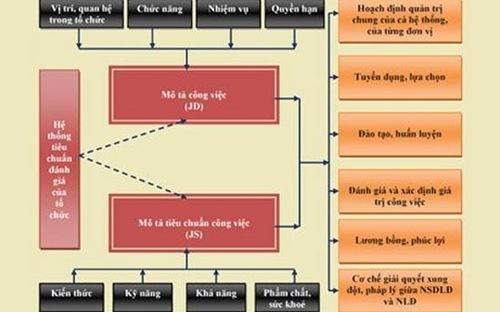 quản lý nhân sự bẳng bảng mô tả công việc