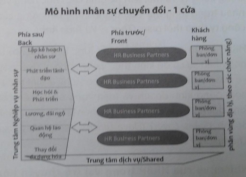 mô hình nhân sự chuyển đổi, quản trị nguồn nhân lực