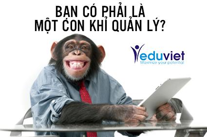Bạn có phải là một con khỉ quản lý?