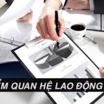 Đặc điểm quan hệ lao động tại Việt nam