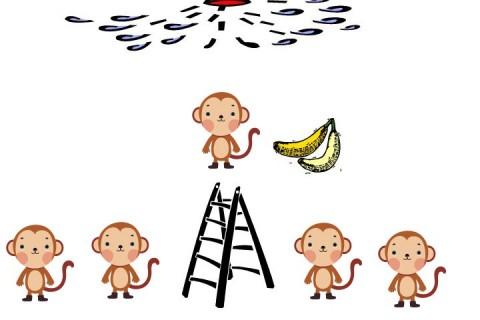 5 chú khỉ - 1 nải chuối và bài học quản trị vùi dập